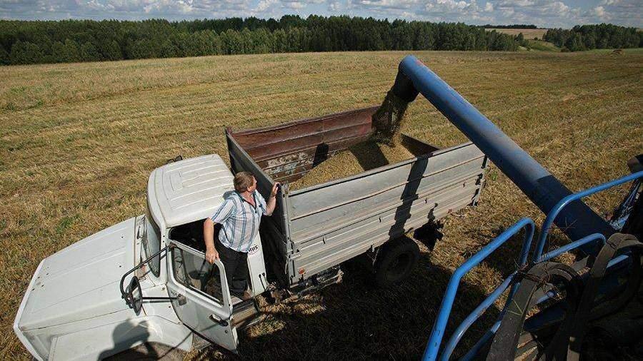 Непогода притормозила темпы уборки зерновых в Российской Федерации