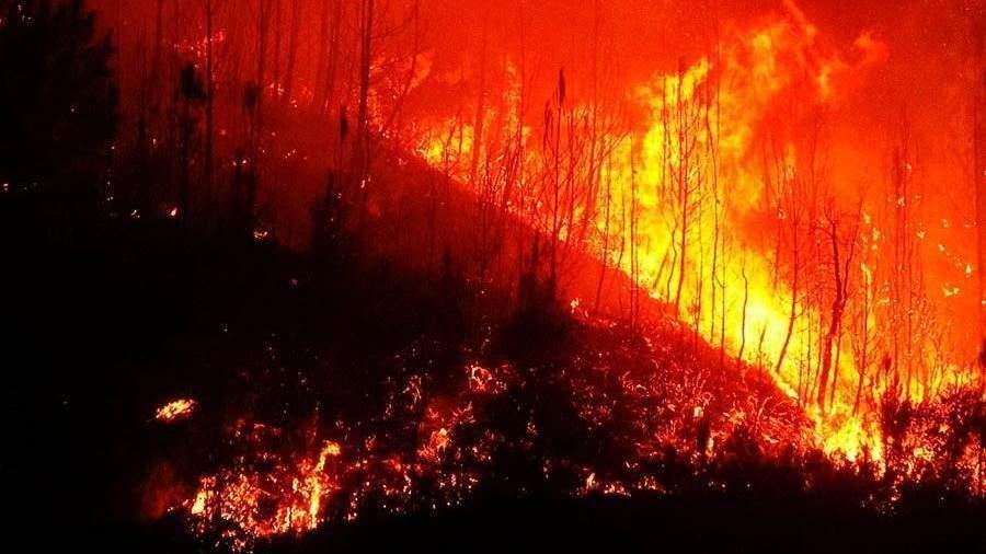 Практически 40 тыс. гатайги выгорело в областях Дальнего Востока засутки